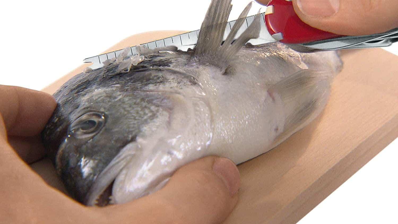 Dụng Cụ Đa Năng Victorinox Fisherman 1.4733.72