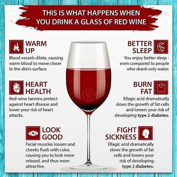 Rượu vang có tốt cho sức khỏe không?